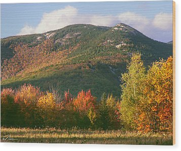 Welch And Dickey Mountains Wood Print