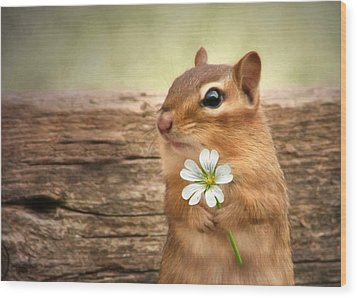 Wood Print featuring the photograph Welcome Spring by Lori Deiter