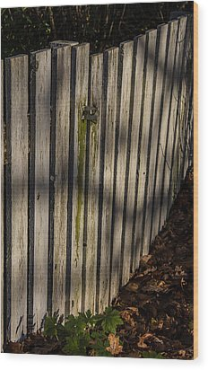 Wood Print featuring the photograph Welcome To The Backyard by Odd Jeppesen