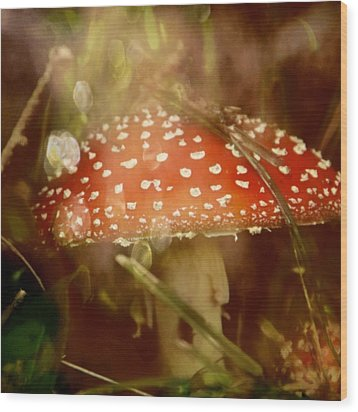 Welcome To Wonderland Wood Print by Odd Jeppesen
