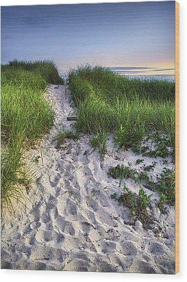 Wellfleet Beach Path Wood Print