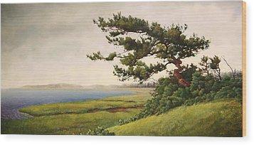 Wellfleet Saltmarsh Wood Print by Stephen Bluto