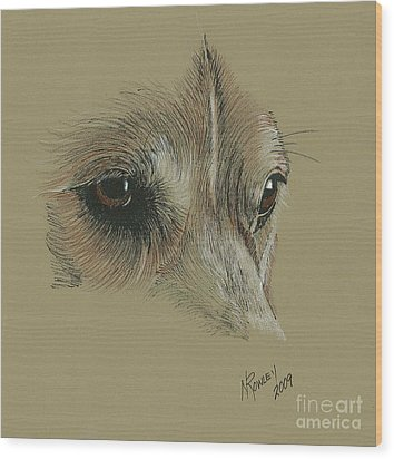 Welsh Corgi Eyes Wood Print by Norma Rowley