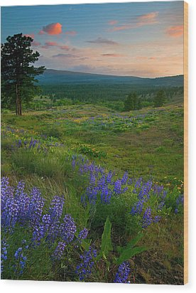 Wenas Valley Sunset Wood Print by Mike  Dawson