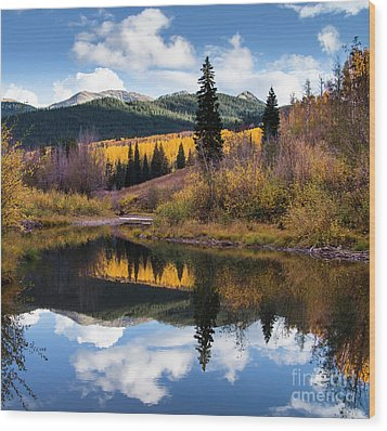 Wood Print featuring the photograph West Elk Range Reflection by The Forests Edge Photography - Diane Sandoval