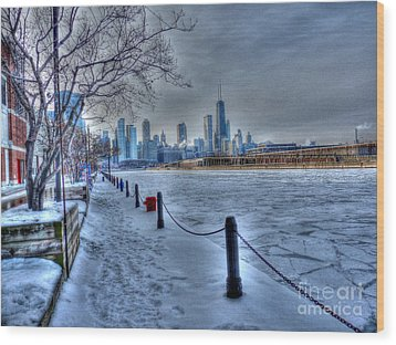West From Navy Pier Wood Print by David Bearden