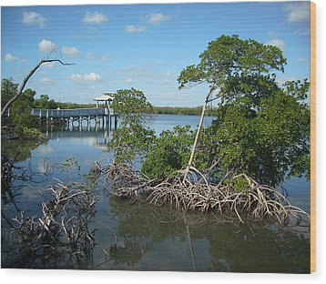 Wood Print featuring the photograph West Lake Park by Artists With Autism Inc