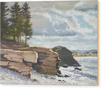 West Shores Presque Isle Wood Print by Larry Seiler