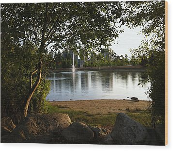 West View Of Lafarge Lake Wood Print by Rod Jellison