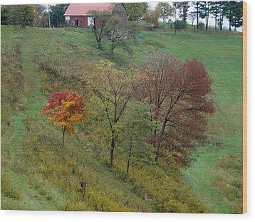 West Virginia Hillside Wood Print by Terry  Wiley
