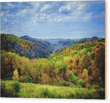West Virginia Wood Print by Mark Allen