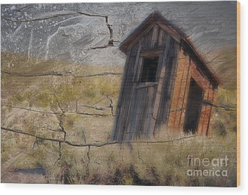 Western Outhouse Wood Print by Ron Hoggard