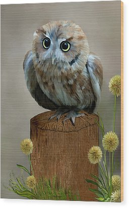 Western Screech Owl Wood Print by Thanh Thuy Nguyen