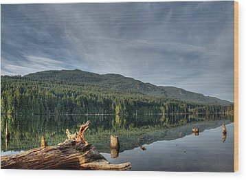 Wood Print featuring the photograph Westwood Lake by Randy Hall