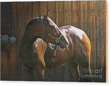 Wet Athlete Wood Print by Deborah Johnson