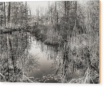 Wetland Essence Wood Print