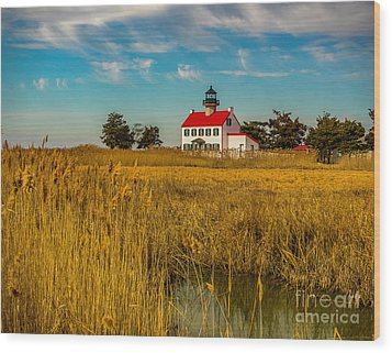 Wood Print featuring the photograph Wetlands At East Point Light by Nick Zelinsky