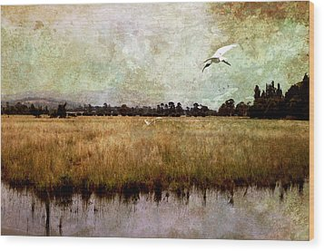 Wetlands Wood Print by Margaret Hormann Bfa