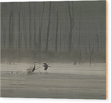 Wetlands Morning Wood Print