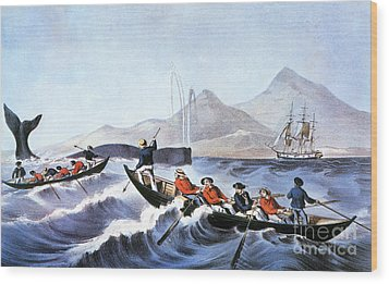 Whale Fishery, Laying On Wood Print by Granger