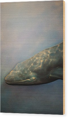 Whale Meet Again Wood Print by Jez C Self