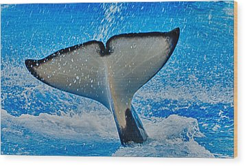 Whale Of A Tail Wood Print by Linda Pulvermacher