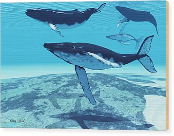 Whale Pod Wood Print by Corey Ford