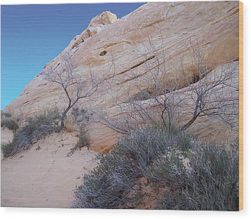 Whale Rock Wood Print by Steve Ellis