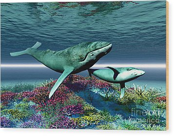 Whale Song Wood Print by Corey Ford