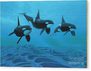 Whale World Wood Print by Corey Ford