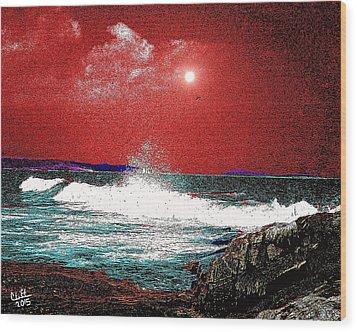Whaleback At Peaks Island Maine Wood Print