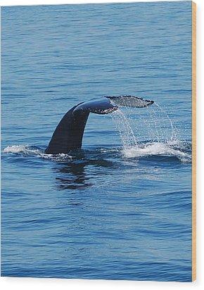 Whales Tale Wood Print by Lisa Kane