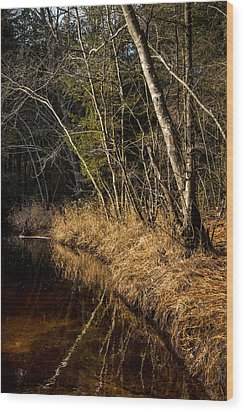 Wharton Forest Fall Wood Print by Glenn DiPaola