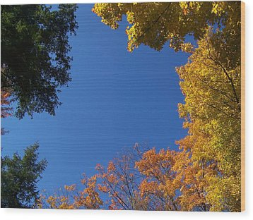 What A Day - Photograph Wood Print by Jackie Mueller-Jones