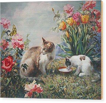 What A Girl Kitten Wants Wood Print by Svitozar Nenyuk