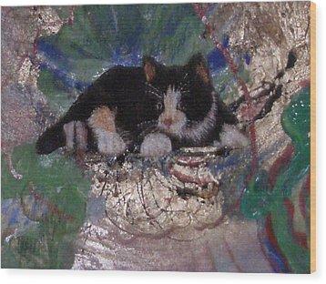 What A Pretty Kitty Wood Print by Anne-Elizabeth Whiteway