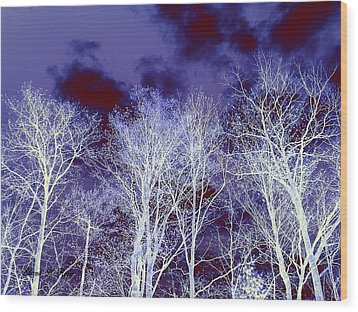 Wood Print featuring the photograph What Lies Above by Shana Rowe Jackson