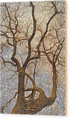 What We See The Mind Believes Wood Print by James Steele