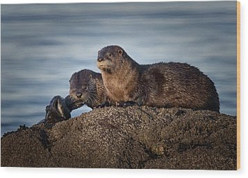 Wood Print featuring the photograph Whats For Dinner by Randy Hall
