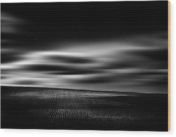Wood Print featuring the photograph Wheat Abstract by Dan Jurak