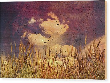 Wheat Field Dream Wood Print by Bob Orsillo