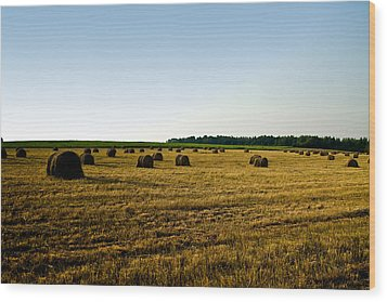Wood Print featuring the photograph Wheat Field by Gary Smith