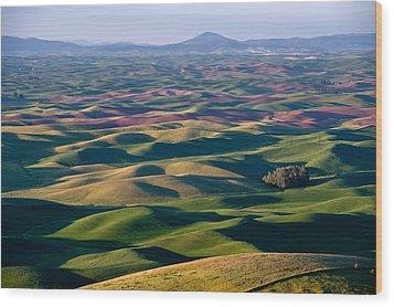 Wheat Fields Of Palouse Wood Print by Lee Chon