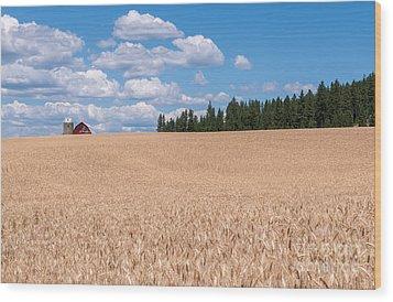 Wheat Fields Wood Print by Sharon Seaward