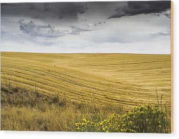 Wheat Fields With Storm Wood Print by John Trax