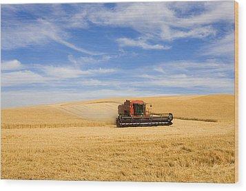Wheat Harvest Wood Print by Mike  Dawson