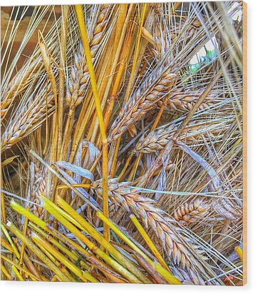 Wood Print featuring the photograph Wheat by Jame Hayes