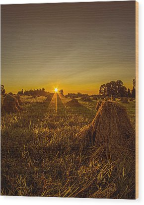 Wood Print featuring the photograph Wheat Shocks by Chris Bordeleau