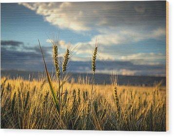 Wheat's Up Wood Print
