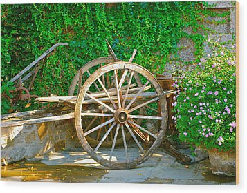 Wheel Of Happiness Wood Print by Dorota Nowak